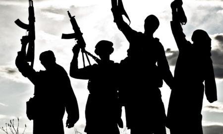 Hindi Editorial, Youngster, Terrorist