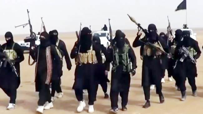 Taliban Militants Killed