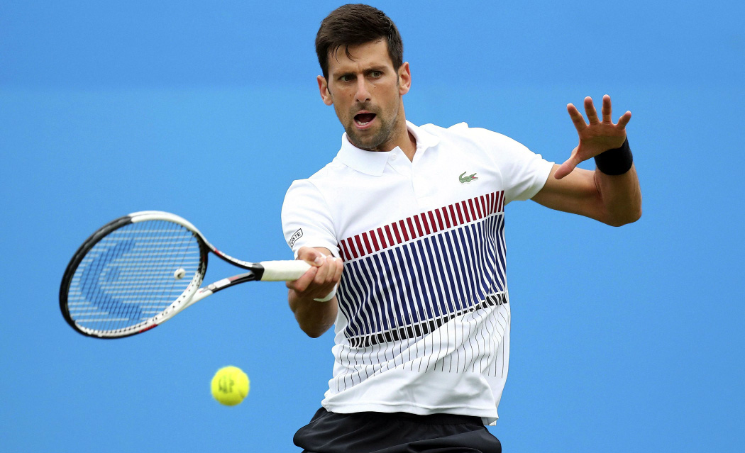 Novak Djokovic, Semifinals, Serbian, Tennis