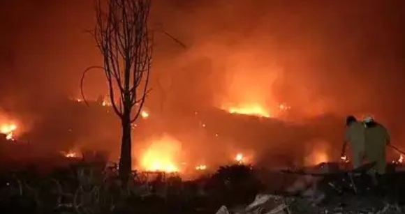 Fire in California Forest