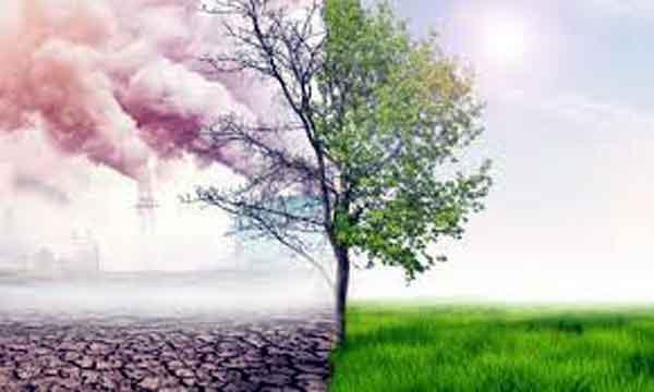 Environmental-crisis
