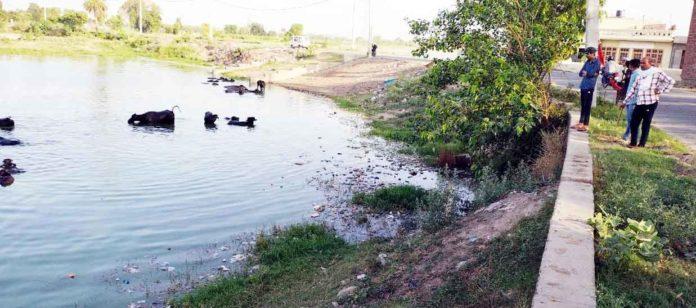 Village-Kalhedi