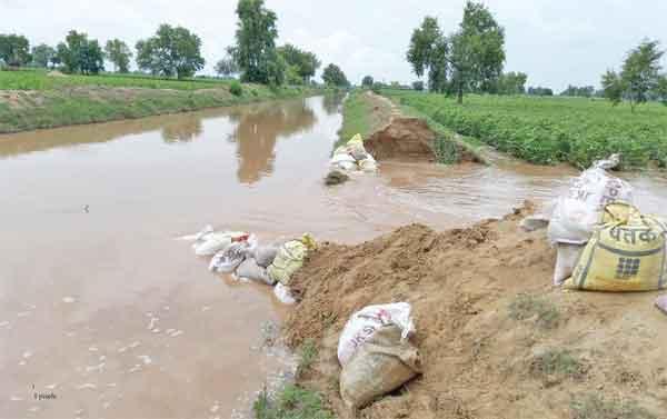 crop waterlogging