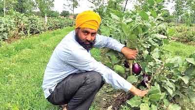 Inspiration Farmer Karnail Singh